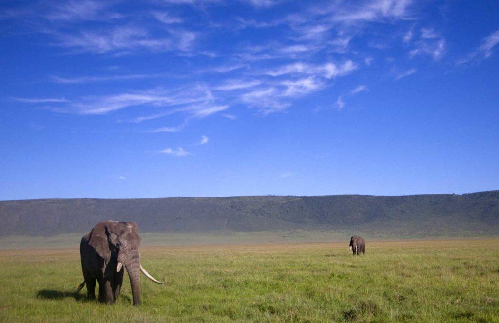 12Days-Uganda Mount Rwenzori